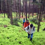 Czech Paradise hiking tour 6