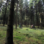 Prague–Dresden XC mountain bike holiday