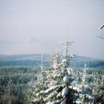 Cross Country skiing tour Czech Republic 1