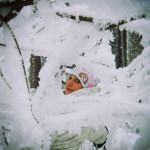 Cross Country skiing tour Czech Republic 5