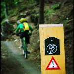 Singletrack-Paradise-mtb-tour-Czech-Republic 30