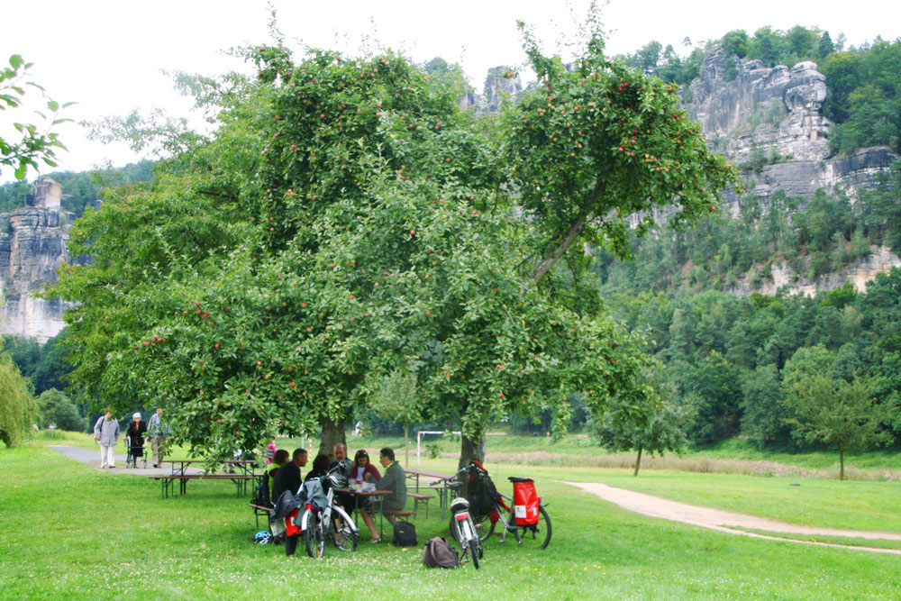 prague-dresden-bike-holiday